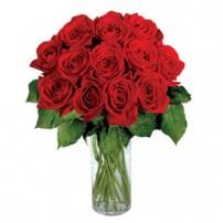 Enchanted Roses OFERTA!, Nicaragua